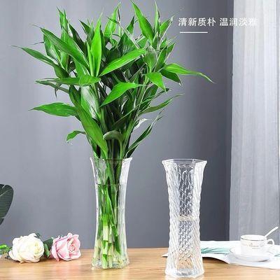 花瓶透明富贵竹转运瓶摆件家用干花瓶水竹透明大号干花插居装养水