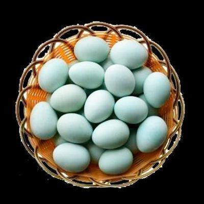 热卖山林散养乌鸡蛋新鲜绿壳蛋农家土鸡蛋一箱装草鸡蛋特产柴鸡蛋