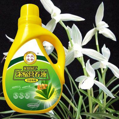 兰花专用营养液肥料盆栽君子兰蝴蝶兰花卉植物营养液叶面肥复合肥