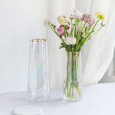 北欧描金边简约直筒珠光透明玻璃花瓶极光幻彩人鱼姬花艺插花花器
