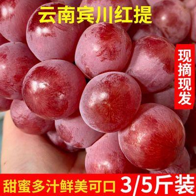 云南宾川红提3/5斤葡萄新鲜现摘当季水果红提子孕妇水果整箱包邮
