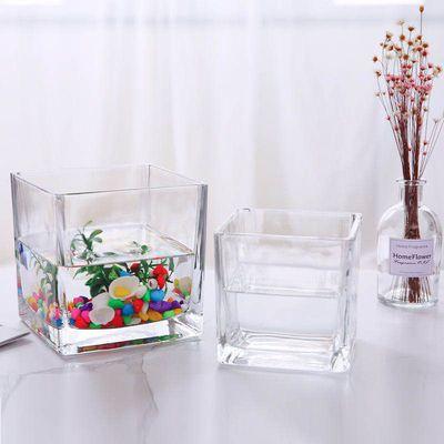 水培器皿创意玻璃花盆水养鱼缸瓶透明花器绿萝白掌花瓶正方形容器