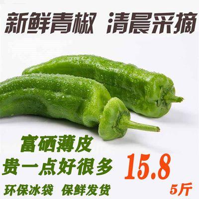 辣椒新鲜微辣现摘薄皮青椒天门富硒虎皮辣椒天然农家自种五斤包邮