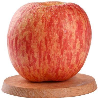 精品果 陕西洛川红富士苹果5/10斤一箱新鲜非膜袋丑苹果冰糖心