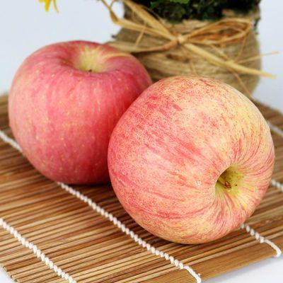 新果陕西延安洛川苹果冰糖心水果红富士当季新鲜包邮整箱5斤10斤