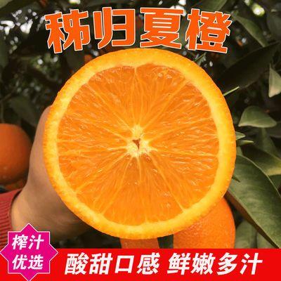 橙子 夏橙 当季水果水果当季现摘现发孕妇橙应季水果夏橙