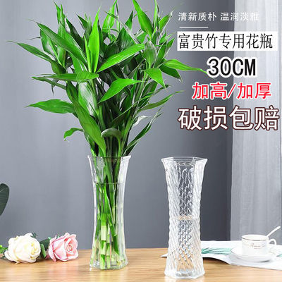 大号玻璃花瓶透明水培百合富贵竹花瓶客厅家用水养鲜花插花瓶摆件