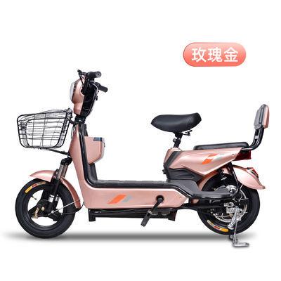 电动车锂电池电瓶车助力车新款男女两轮成人48V小型自行车代步车