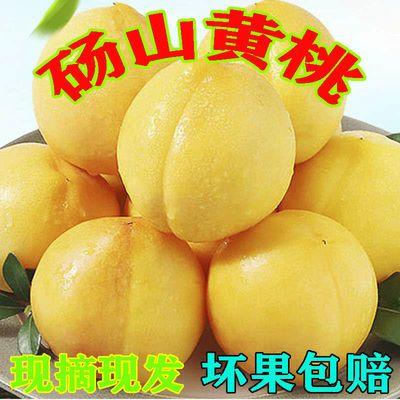 现摘桃子黄桃新鲜水果3/5/10斤整箱包邮当季时令应季脆甜桃蜜桃孕