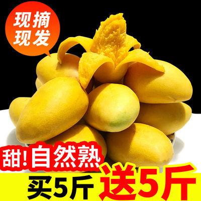 https://t00img.yangkeduo.com/goods/images/2020-06-14/6cb0e8cf1dc9ffe75bafa5c6ff4ffde8.jpeg