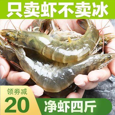 4斤水产海鲜大虾一箱鲜活新鲜海虾活体对虾基围虾白虾非青岛大虾
