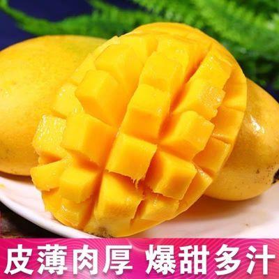 新鲜小台芒10/5/3斤孕妇水果台农芒果一整箱批发非金煌贵妃芒果