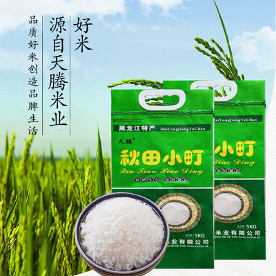 天腾东北大米非五常稻花香2号大米长粒香新米圆粒米5kg2斤正宗米