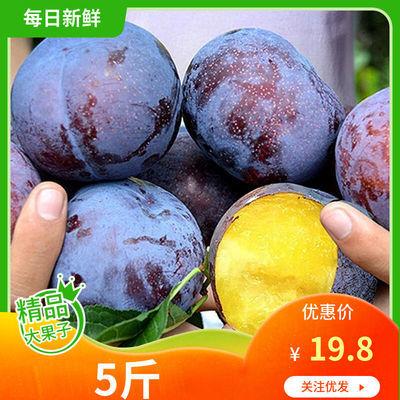 陕西黑布林李子水果新鲜应季黑布朗非青脆李子2斤5斤10斤整箱包邮