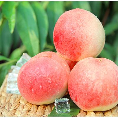 现摘现发龙泉水蜜桃毛桃新鲜超甜可撕皮当季令多规格孕妇宝宝水果