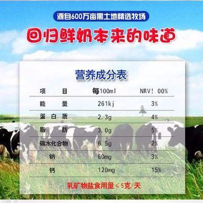 【特价】新日期完达山巴氏高钙袋装原味发酵酸奶12袋学生孕妇中老