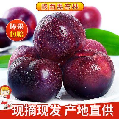陕西黑布林李子黄心李子2/5/10斤酸甜脆李子当季新鲜水果现发包邮