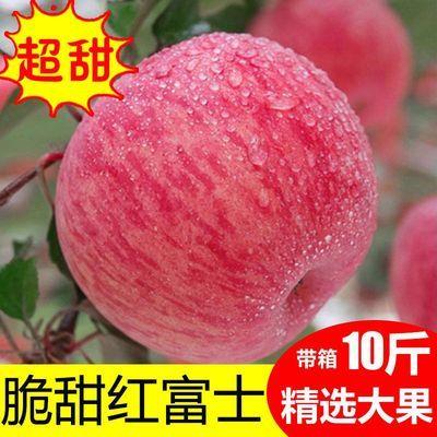 新品陕西延安高山水晶红富士苹果水果新鲜10/5斤批发一整箱包邮冰