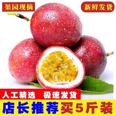 【送开果器】新鲜现摘广西百香果精选大果新鲜水果批发酸甜多汁