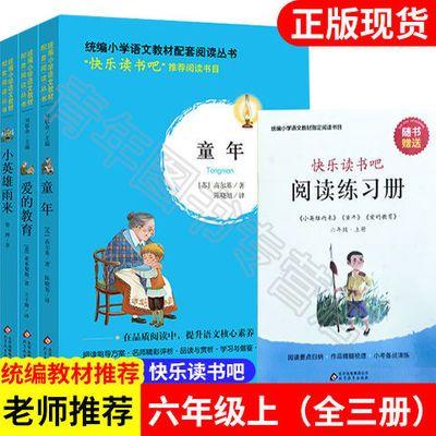 六年级上快乐读书吧童年高尔基小英雄雨来爱的教育全三册北京教育