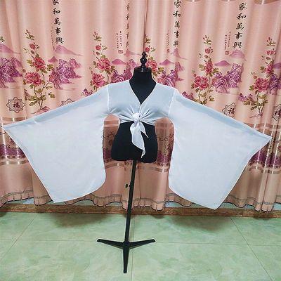 成人水袖古典舞蹈服唐汉舞蹈水袖广袖大袖博袖练习袖表演服上衣女