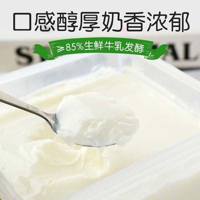 2kg新疆天润酸奶大桶装浓缩老酸奶水果捞沙拉益家润康抖音网红奶