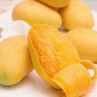 百色芒果台农9斤净果销售 现摘现发 新鲜美味