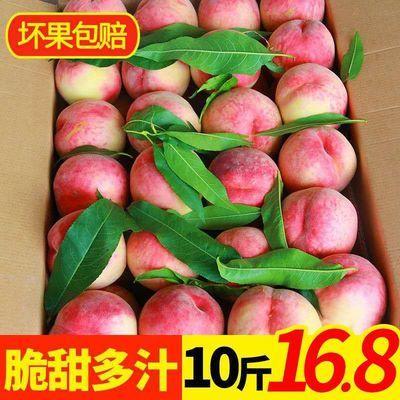 【极速发货】新鲜水蜜桃脆桃子毛桃水果现摘3/5/10斤新鲜桃水蜜桃