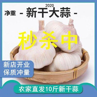 10斤新蒜干蒜大蒜头批发价新鲜蔬菜干蒜头2/5/10斤紫白皮干大蒜