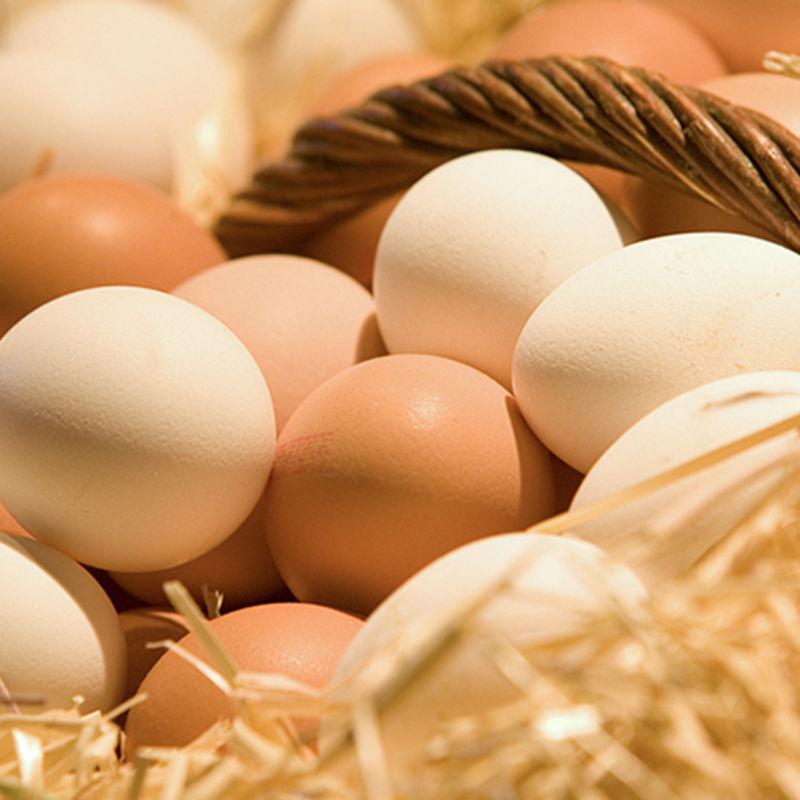 正宗农家散养土鸡蛋新鲜营养笨鸡蛋当天现捡批发整箱包邮破损包赔