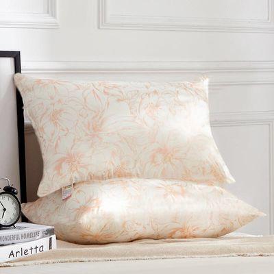 枕头枕芯一对装成人家用护颈枕头芯一对一只一个学生宿舍枕头套装