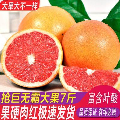 巨无霸超大南非红心西柚 葡萄柚 新鲜水果包邮