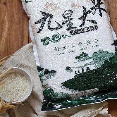 九星 东北大米农家大米10斤 新大米东北粳米长粒香米5kg