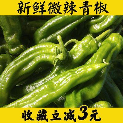 【5斤装】新鲜薄皮青椒不辣微辣虎皮皱皮青辣椒农家自种蔬菜1斤