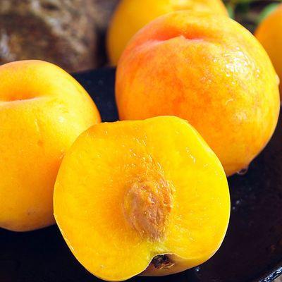 黄桃桃子新鲜水果5斤包邮整箱孕妇砀山83黄心桃当季时令酸甜脆桃