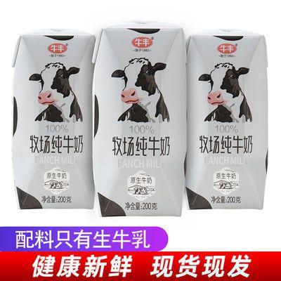 【促销】牛丰纯牛奶儿童成长早餐学生纯奶网红牛奶24盒装特价整箱