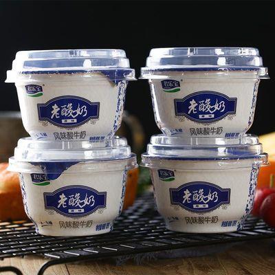 【促销】君乐宝老酸奶风味酸牛奶发酵菌乳原味儿童早餐奶12碗装整