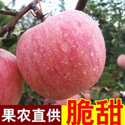 烟台红富士苹果苹果水果苹果新鲜水果脆甜多汁整箱水果山东苹果