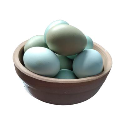 【促销】【韩氏惠康】农家绿壳土鸡蛋乌鸡蛋谷物新鲜林下散养生态