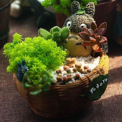 龙猫多肉花盆微景观植物盆栽宿舍办公桌装饰摆件防辐射DIY礼物