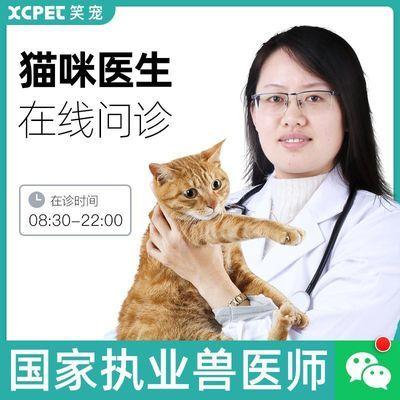 ~宠物医院医生在线咨询动物兽医猫免费问诊体检疾病猫绝育公猫乱