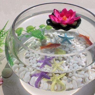 水培玻璃花瓶透明大号水仙盆碗莲盆睡莲花盆乌龟鱼缸水养植物器皿