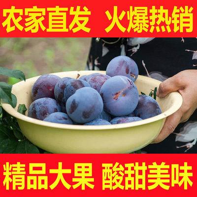 陕西黑布林李子水果黑布朗新鲜应季批发非青脆红心三华李脱骨李子