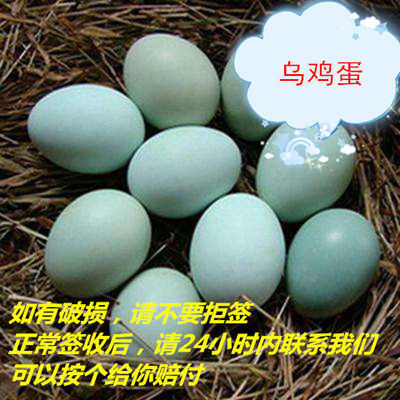 2020夏季鲜果新鲜现货舌尖上的玉食 新鲜乌鸡蛋绿壳蛋30枚包邮破