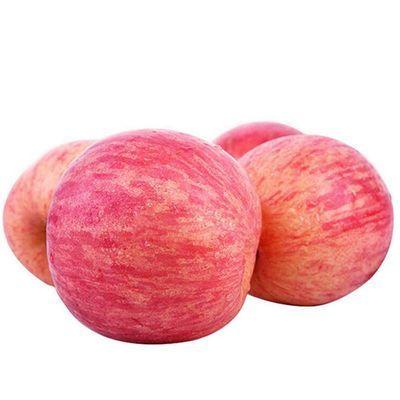 2020新款精品【精选洛川红富士】陕西正宗洛川水晶红富士苹果5斤1