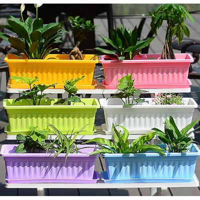 加厚花盆【送托盘+花种+肥生根粉】绿植花卉绿萝多肉植物塑料花盆