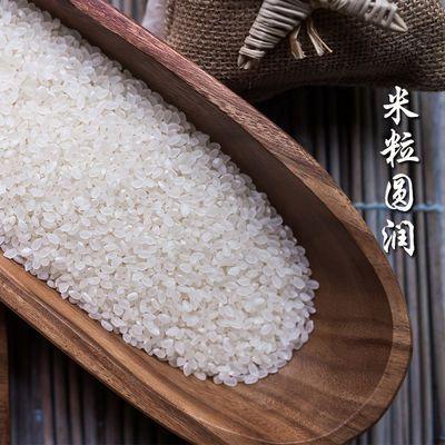 【热卖】【2019年新米】东北大米10斤5kg珍珠米圆粒米小町米批发