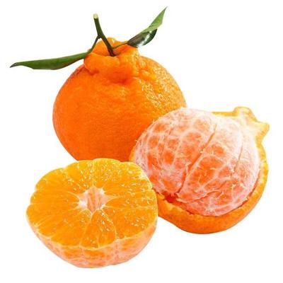 2020夏季鲜果新鲜现货新鲜丑橘10斤装不知火丑桔丑柑丑八怪四川水