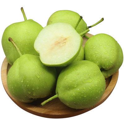 10斤19.8】脆甜多汁砀山青梨子3/5/10斤水果当季新鲜孕妇水果包邮