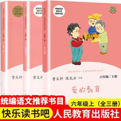 六年级上人教版爱的教育小英雄雨来童年曹文轩陈先云快乐读书吧